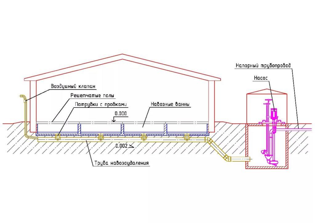 Схема коровника